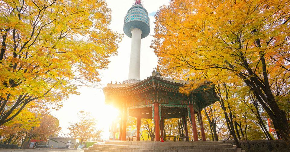 Tour du lịch Hàn Quốc 5 ngày 4 đêm (2020) từ Hà Nội - Bigtravel.vn